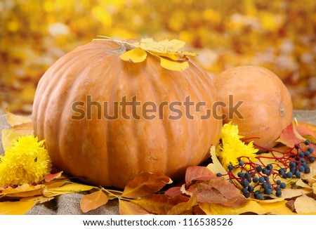 pumpkins and autumn leaves, on yellow background