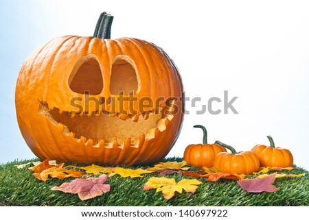 Pumpkins and dried leaves for halloween decoration. - stock photo