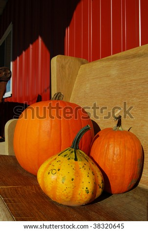Pumpkins and Gourd on Bench in late afternoon autumn sun - stock photo