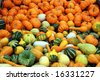 Pumpkins and squash background - stock photo