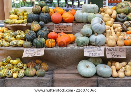 Pumpkins and squashes for sale at farmers market - stock photo