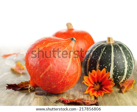 Pumpkins isolated on a white background. Selective focus - stock photo