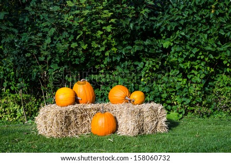 Pumpkins on a straw bale against green background. - stock photo