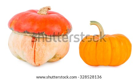 Pumpkins on a white background, pumpkins on white the isolated