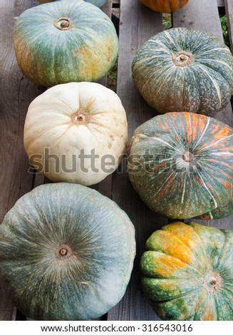 pumpkins on a wood background