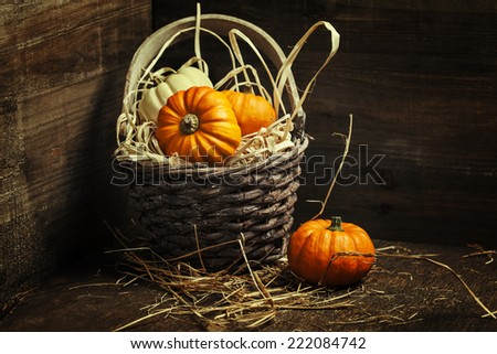 pumpkins on old wooden table - stock photo