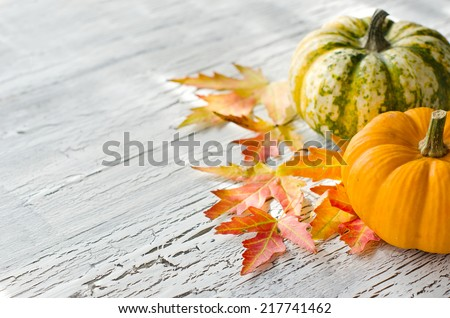 Pumpkins with orange and red autumn leaves on cracked background - stock photo