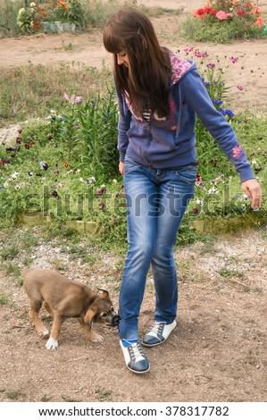 Puppy biting the girl's leg - stock photo