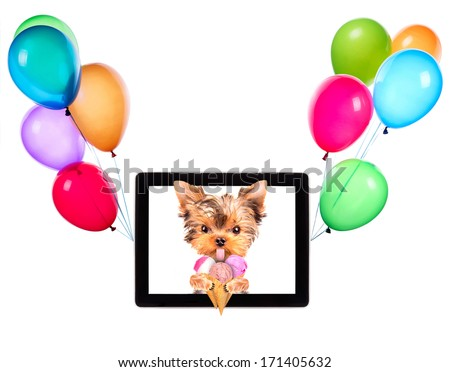 puppy dog licking with ice cream on a digital tablet screen and balloons - stock photo