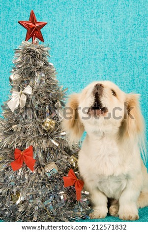 Puppy dog sitting next to silver Christmas tree singing carols on blue background - stock photo