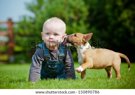puppy kissing a little boy - stock photo
