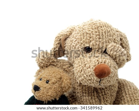 Puppy toy with teddy bear - stock photo
