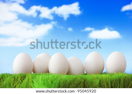 pure white eggs on green grass with blue sky and cloud background
