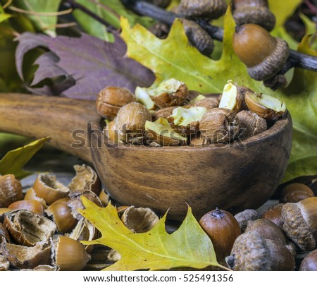 Purified acorns for culinary and medical use