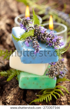 Purple and green soap with lavender flowers and fern leaves.  - stock photo