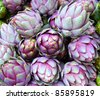 Purple Artichokes Closeup - stock photo