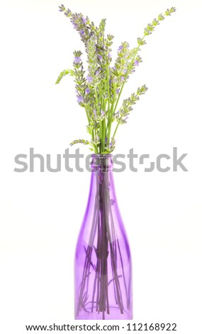 purple bottle containing lavender stems - stock photo