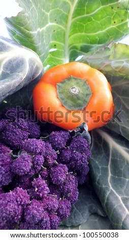purple broccoli, cabbage  and orange bell pepper