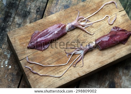 purple calamari squid fresh seafood on a red rustic wooden floor - stock photo