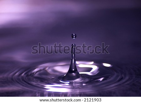 Purple Drop - stock photo
