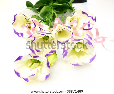 purple flower and ribbon