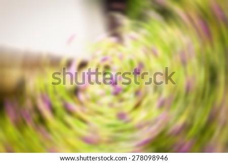 Purple flower background - stock photo