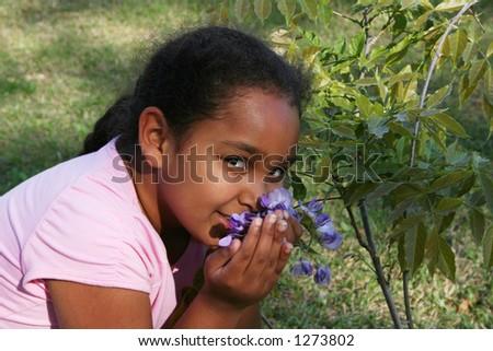 Purple flowers. - stock photo