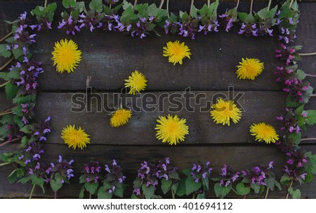 Purple flowers forming a frame and dandelions in the middle on wooden board - flat lay