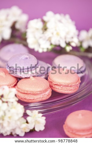 Purple french macaroons with cherry branch