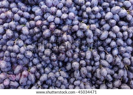 Purple Grapes - stock photo