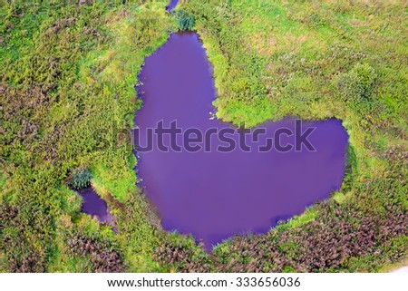 purple heart-shaped lake. purple heart-shaped lake in the former bend of the river - stock photo
