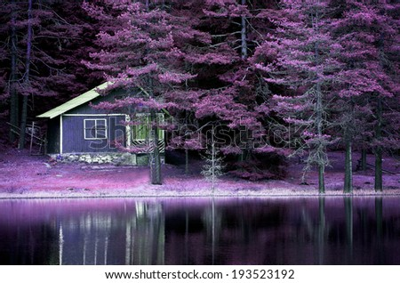 purple infrared landscape on calm lake for background or poster  - stock photo