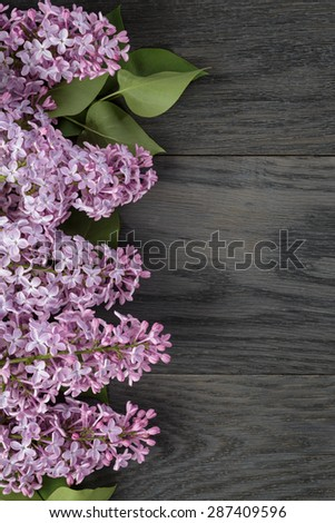 purple lilac flower on old oak table top view with copy space, flower background - stock photo