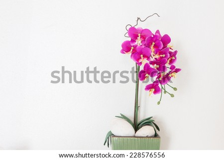 Purple orchid flower on white dinning table. - stock photo