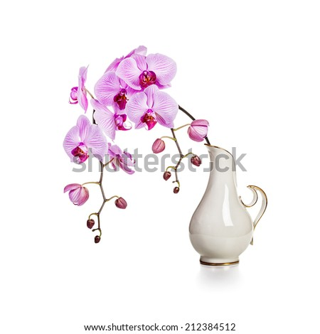 Purple orchid flowers in retro vase isolated on white background - stock photo