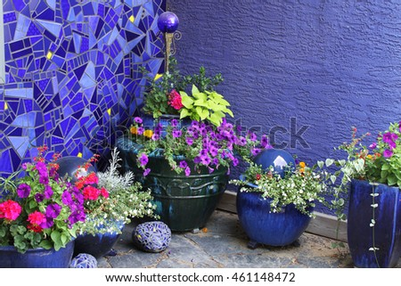 Purple wall and flower corner.