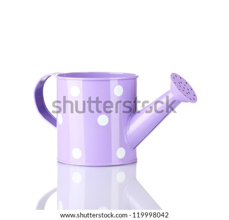 Purple watering can with white polka-dot isolated on white - stock photo