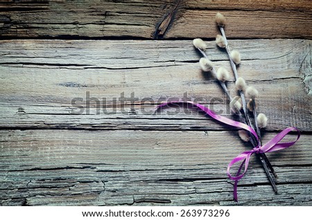 Pussy willow spring bloom,  vintage stylized background - stock photo