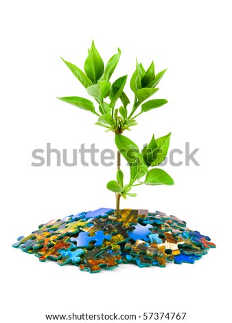 Puzzle and plant isolated on white background - stock photo