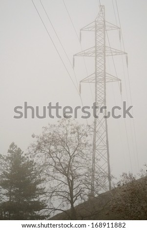 Pylons in mist at the edge of the forest - stock photo