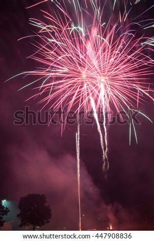 Pyrotechnic fireworks celibration in the night sky