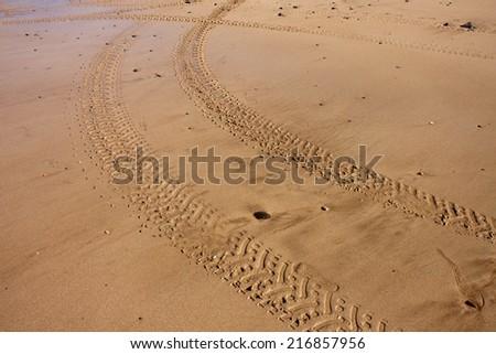 quad bike tracks on a beach in New Zealand  - stock photo