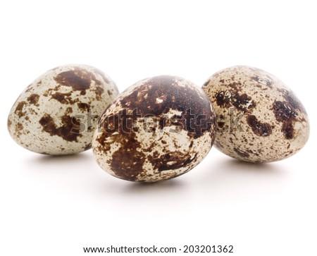 Quail egg isolated on white background cutout - stock photo
