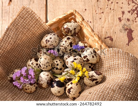 Quail eggs in basket and flowers. Top view - stock photo