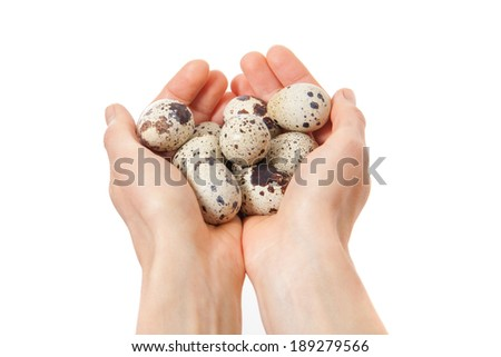 Quail eggs in hands isolated on white background