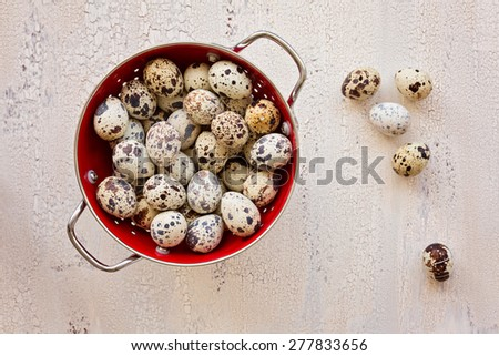Quail eggs in red colander on light wooden background, top view - stock photo
