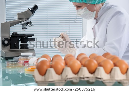 Quality control expert inspecting at chicken eggs in the laboratory - stock photo