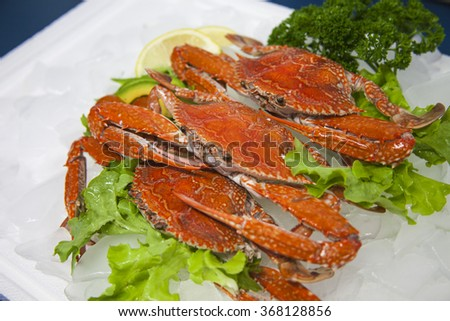 Queensland Sand Crab Cooked