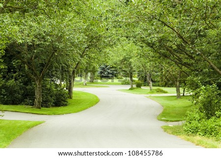 Quiet country road in summer. Also available in spring version. Fall and winter versions of the same street coming soon. - stock photo