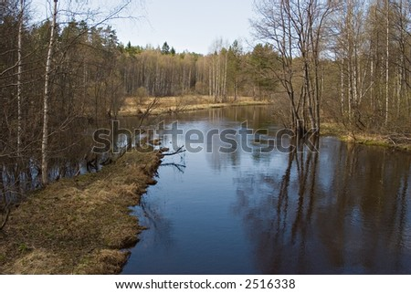 quiet river in spring forest